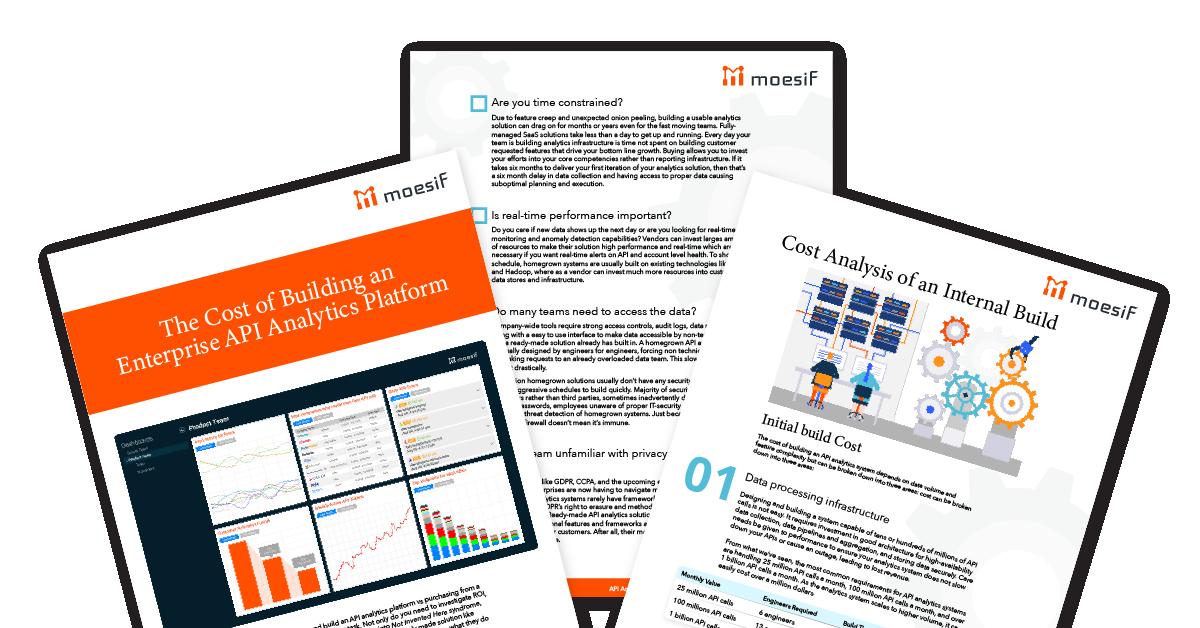Building vs. Buying an API Analytics Platform